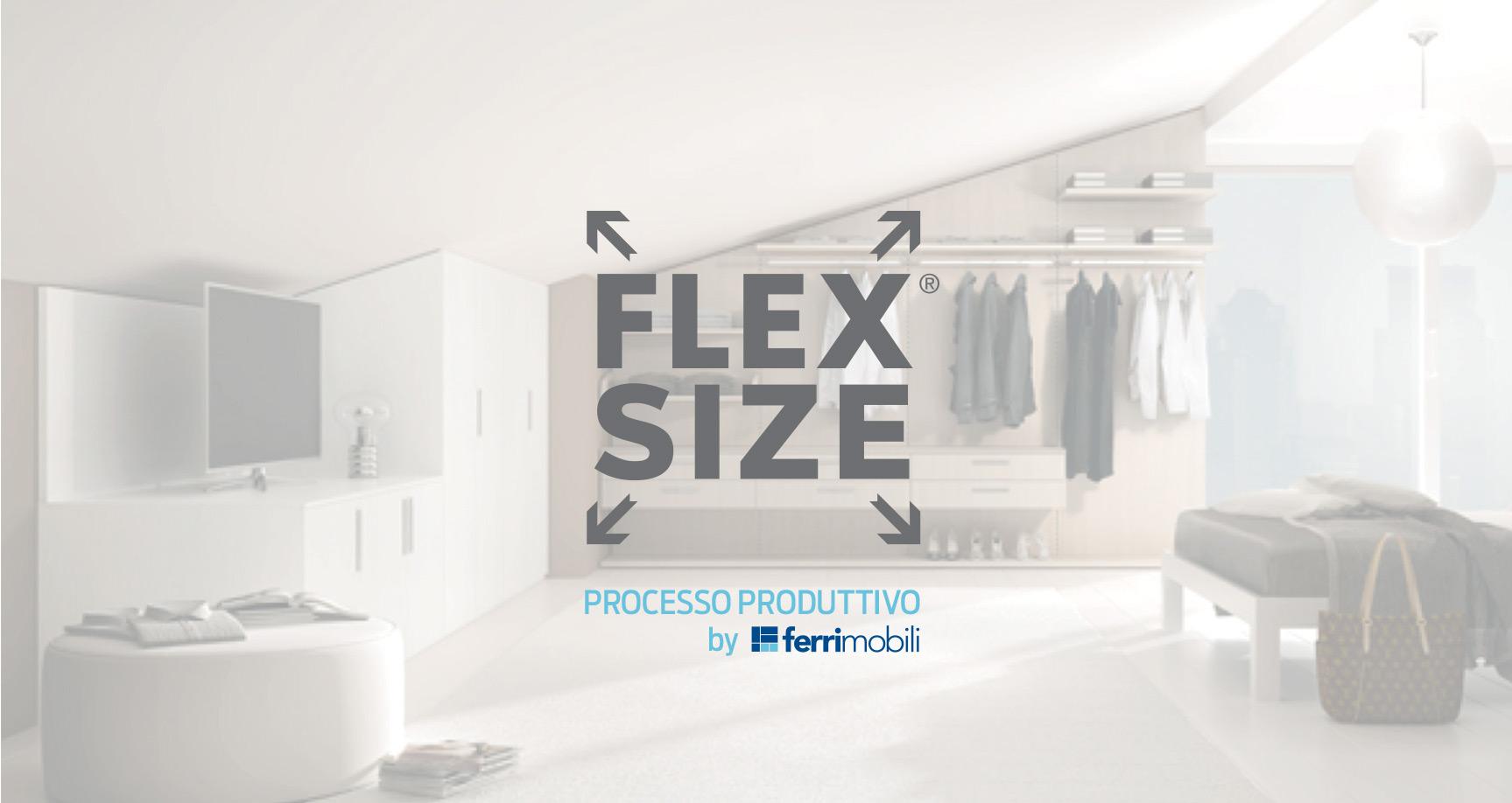 flex11.jpg